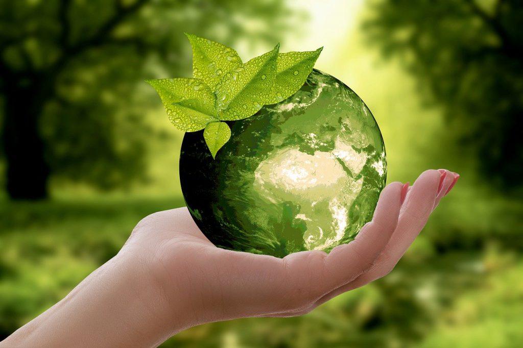 nature, earth, sustainability